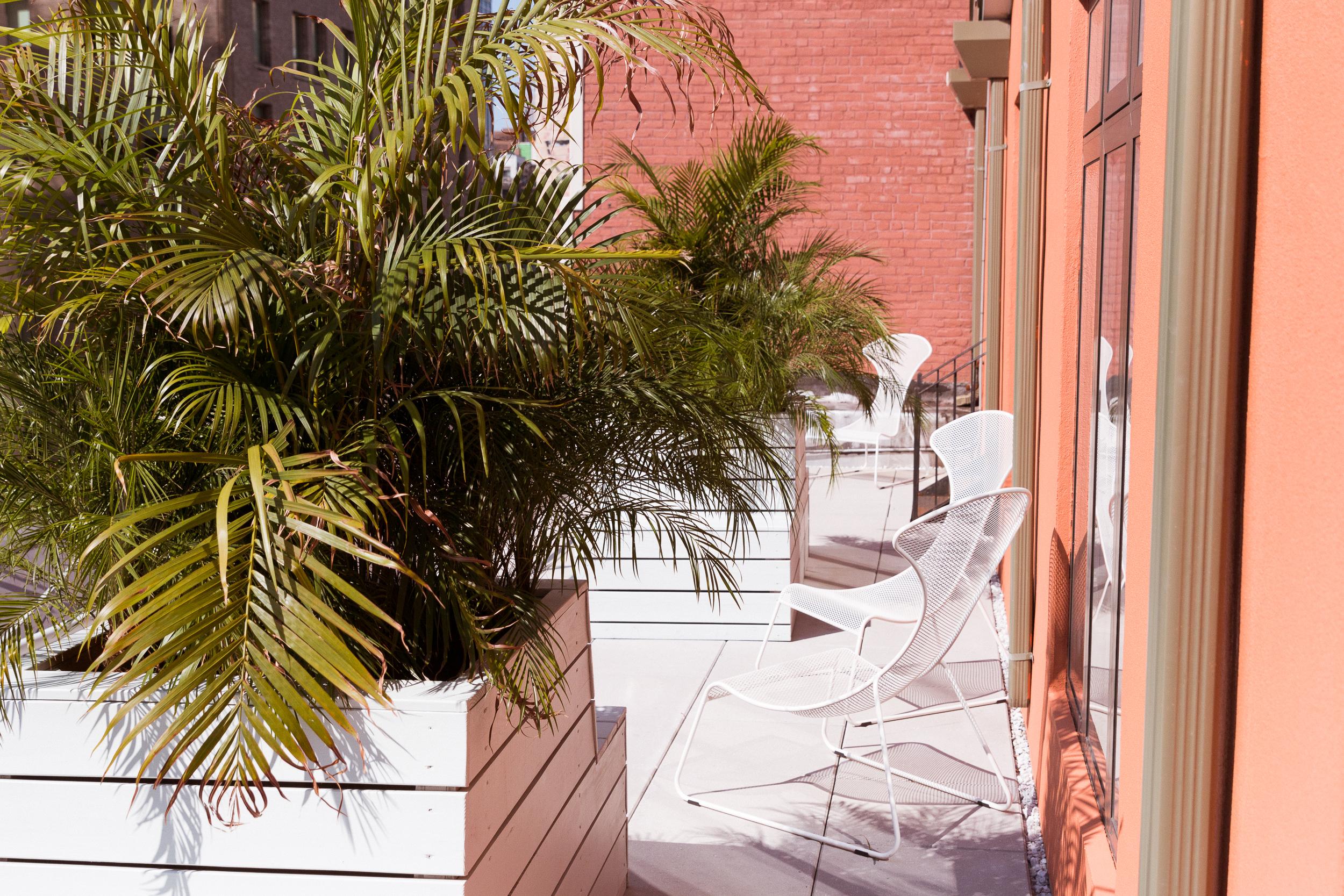 Glossier's balcony